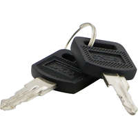 Environ Keys for front/rear doors and side panels - spare set